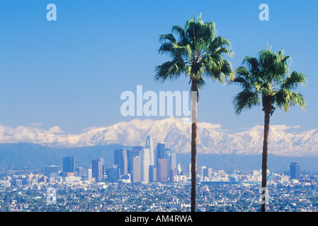 Two palm trees Los Angeles and snowy Mount Baldy as seen from the Baldwin Hills Los Angeles California - Stock Photo