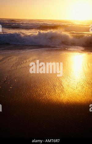 California, Moss Landing, Salinas River State Park, Beach at sunset - Stock Photo