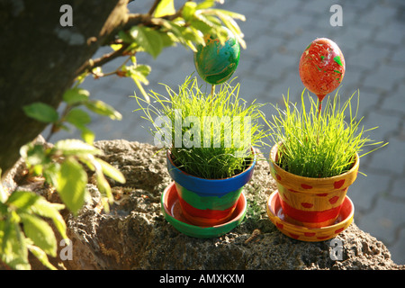 Close-up of two potted plants and Easter eggs - Stock Photo