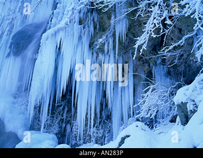 icicles and frost covered plants at waterfall Bad Urach Schwaebische Alb Germany - Stock Photo