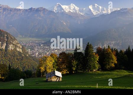 Look from Beatenberg to Eiger (l) Moench (M) Jungfrau (r) Interlaken Herbst Schweiz Berner Oberland switzerland - Stock Photo