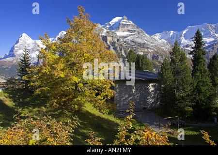 Herbst Muerren Eiger l Moench M Jungfrau r 09 2005 Schweiz Berner Oberland - Stock Photo
