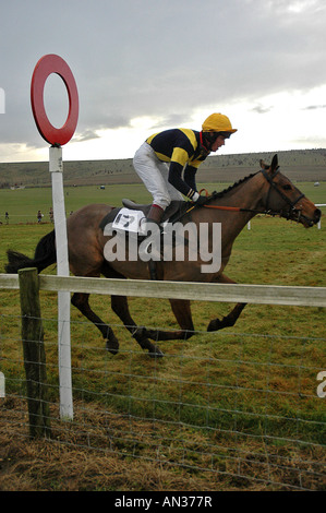 pic martin phelps 14 01 06 barbury castle point to point knighton combe - Stock Photo