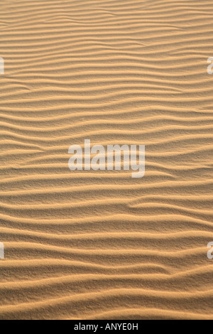 ripples of sand dune of cumbuco in ceara state brazil - Stock Photo