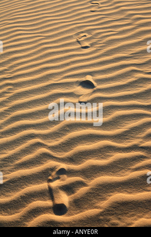 footsteps on the ripples of sand dune of cumbuco in ceara state brazil - Stock Photo