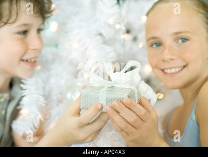 Boy handing sister gift in front of christmas tree - Stock Photo