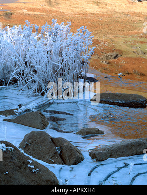 Ice and Frost, Llynnau Mymbyr. Snowdonia National Park. Wales - Stock Photo