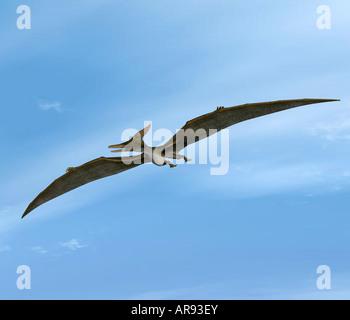 dinosaur Pteranodon - Stock Photo