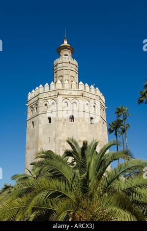 Torre del Oro, El Arenal district, Seville, Andalusia (Andalucia), Spain, Europe - Stock Photo