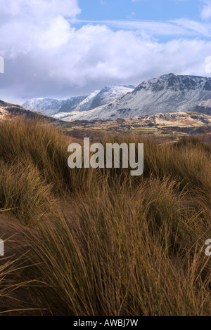 Cadair Idris from the Barmouth sand dunes - Stock Photo