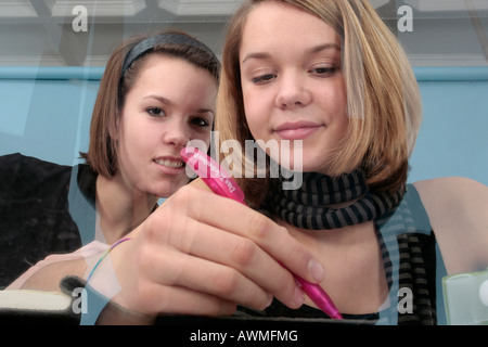 Two young girls doing homework together - Stock Photo