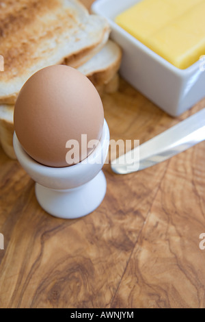 A boiled egg in an egg cup - Stock Photo