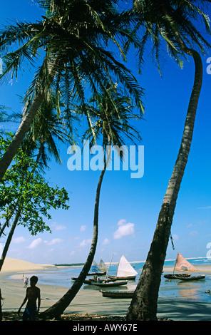 Palm Trees on Beach Jericoacoara Brazil - Stock Photo