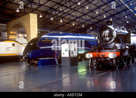 York - Famous old steam trains on display at the National Railway Museum - Stock Photo
