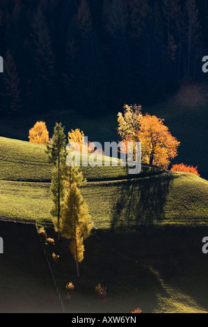 Val di Funes, Dolomites, Bolzano province, Trentino-Alto Adige, Italy, Europe - Stock Photo
