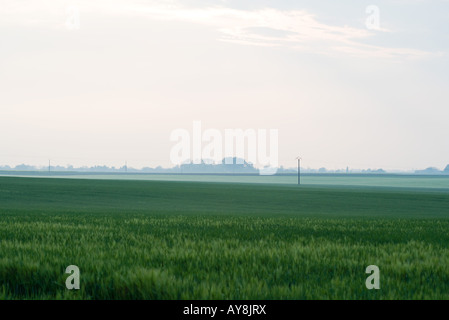 Rural landscape, power lines in the distance - Stock Photo