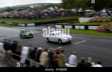 Goodwood Revival 2006 St Mary s Trophy race Jaguar followed by Austin A35 - Stock Photo