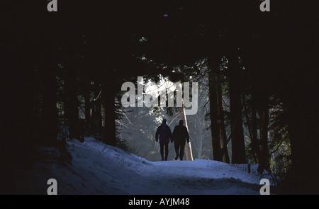Spaziergang in Winterlandschaft auf dem Feldberg im Taunus - Stock Photo