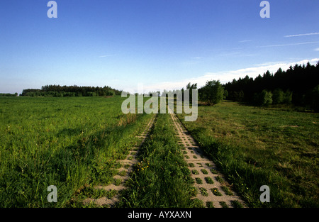 GERMANY DDR BORDER TANK TRACKS COLD WAR - Stock Photo