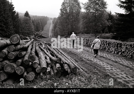 GERMANY DDR BORDER TANK TRACKS WALKING EXERCISE FOREST RELAXATION HARZ MOUNTAINS - Stock Photo