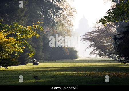 A wooden seat is lit by early morning autumn sunshine at Westonbirt Arboretum in Gloucestershire UK - Stock Photo
