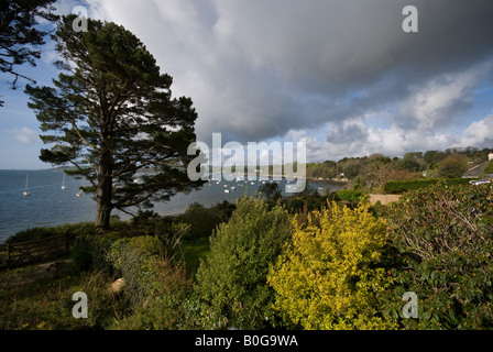 View over Carrick Roads from Feock, near Truro, Cornwall, England, UK - Stock Photo