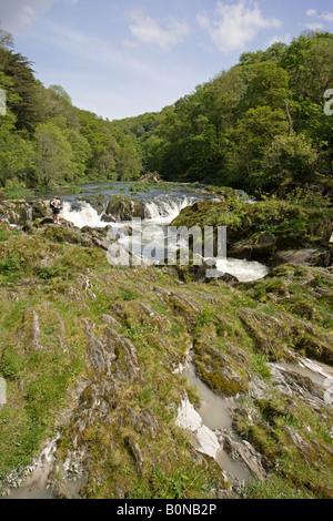 Two walkers by River Teifi Cenarth Falls Cardigan Wales UK - Stock Photo