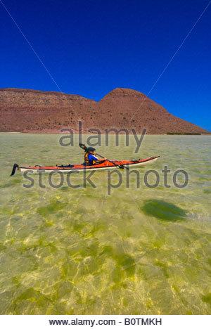 Sea kayaking in El Cardonal Bay Isla Espiritu Santo Sea of Cortes Baja California Sur Mexico - Stock Photo