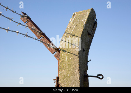 Fence post and barbed wire - Stock Photo