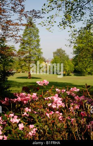 Golders Hill Park in Golders Green, London - Stock Photo