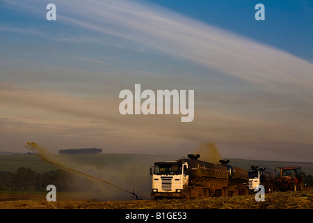 Irrigation of recently cultivated sugarcane field with vinhoto a byproduct of the ethanol industrial process Brazil - Stock Photo