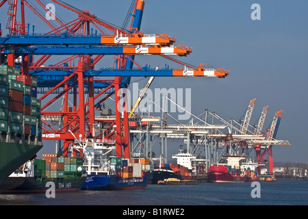 Container ship at the Eurokai container terminal, Hamburg Harbour, Germany, Europe - Stock Photo