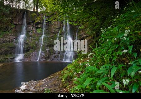 Ess na Crub waterfall Glenariff Glen Ariff forest park near Cushendall County Antrim Northern Ireland UK GB EU Europe - Stock Photo
