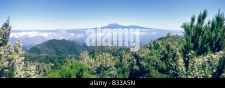 Pico del Teide in trade wind clouds - Stock Photo