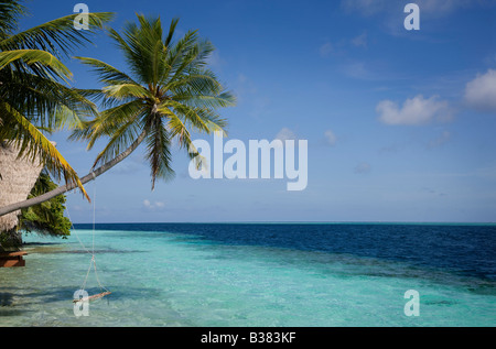 Rope swing on South Ari Atoll in Maldives near India - Stock Photo