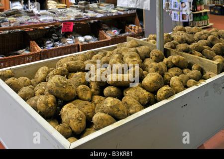 Interior of retail farm shop produce on display Pentland Javelin potatoes - Stock Photo
