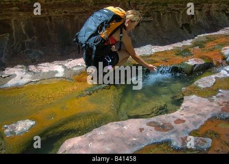 USA, Utah, Zion National Park.  A female canyoneer in the Subway.  (MR) - Stock Photo