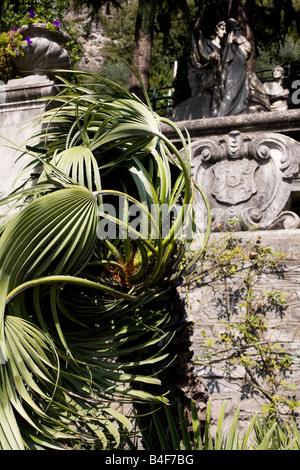Gardens of Villa Monastero, Varenna, Italy - Stock Photo
