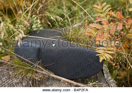 An old black rubber boot left in a wood - Stock Photo