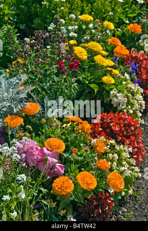 House Flowers, Well-Designed Mixed Garden: Colorful Beds and Borders, Shrubs, Perennials,Annuals, Bulbs, Red,Orange,Yellow,Green - Stock Photo