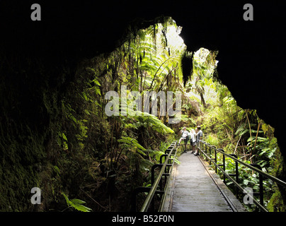 Thurston lava tube - Stock Photo