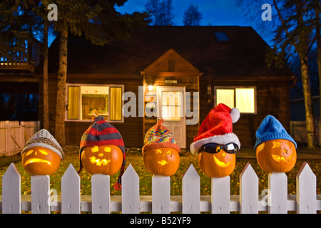 Jack-O-Lantern faces wearing stocking caps, stuck on top of white picktet fence at twilight Fall Anchorage, Alaska. - Stock Photo