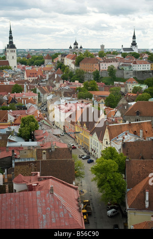 General view of Tallinn old town and Toompea Hill from the steeple of St. Olav's church, Tallinn, Estonia - Stock Photo