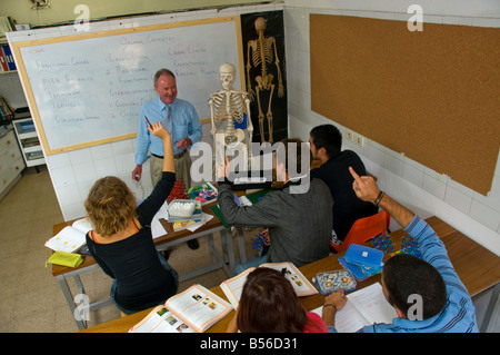Teacher and senior teenage school students in science classroom studying organic chemistry - Stock Photo