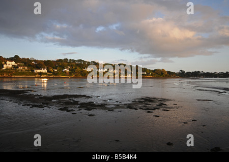 View of Penpol Creek from Point, Devoran, Cornwall, England - Stock Photo