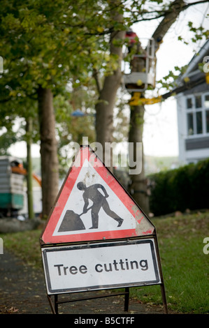 warning triangle sign on footpath as men cut  trees - tree cutting , Aberystwyth Wales UK - Stock Photo