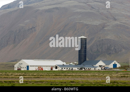 Farm South coast near Hofn Iceland - Stock Photo