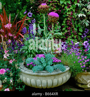 Summer flowering mixed container - Stock Photo