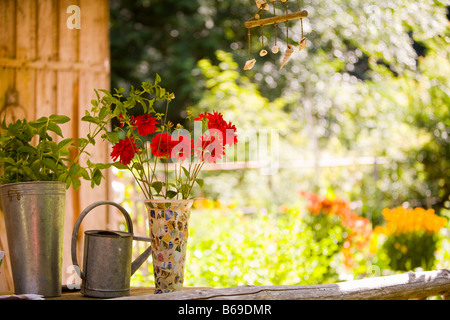 Watering can with a vase of flowers and a potted plant - Stock Photo