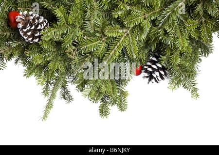 Christmas Evergreen decoration isolated on white background - Stock Photo